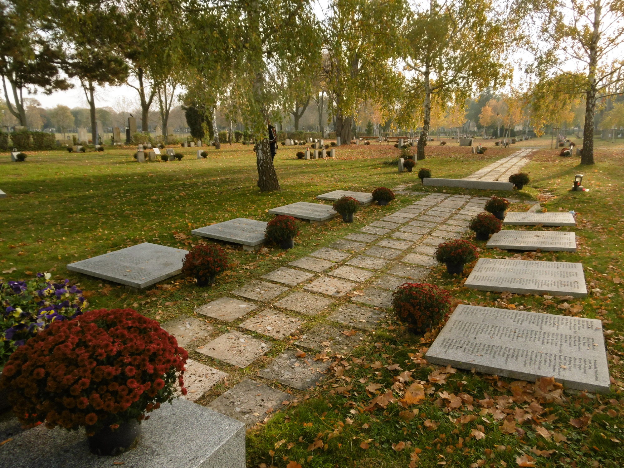 spiegelgrund opfergr ber zentralfriedhof. Black Bedroom Furniture Sets. Home Design Ideas